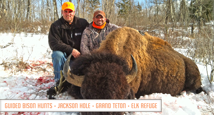 wyoming buffalo hunt outfitters